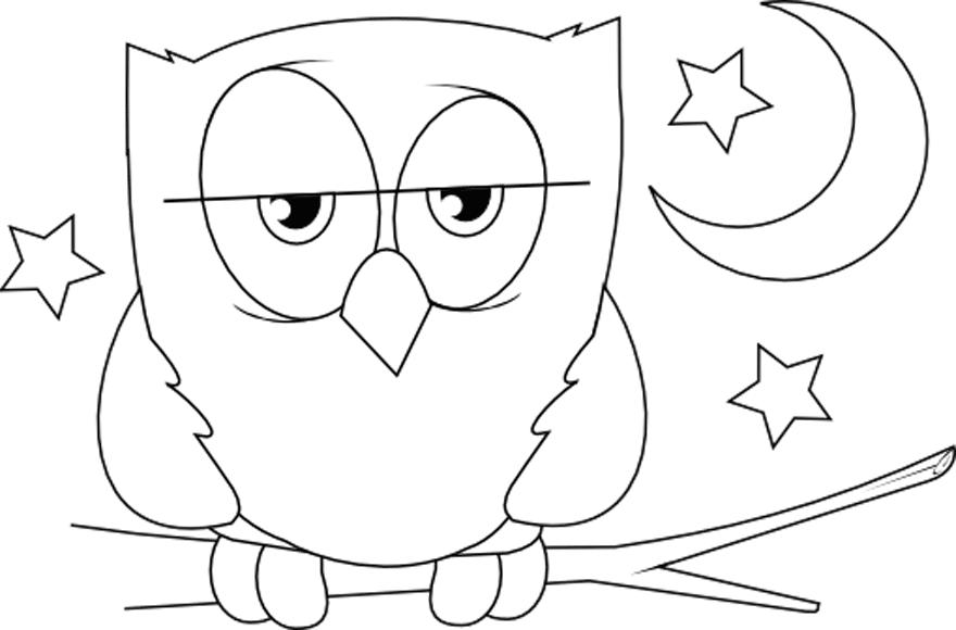 Dibujo de un búho - Edudiver.com